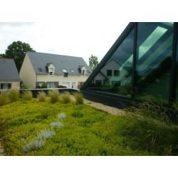 Covertiss Modulo® : module pour toiture végétalisée avec un filtre et sac de substrat spécial toiture végétalisé